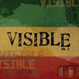 MAV Visible Project - 'Visible VOL 2' (2007)